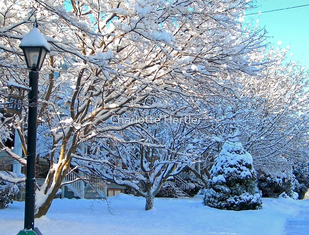 Winter Street by Charlotte Hertler