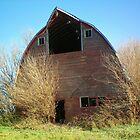 Abandon Barn  by Diane Trummer Sullivan