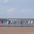 Yachting in Sydney Bay by Elena Martinello