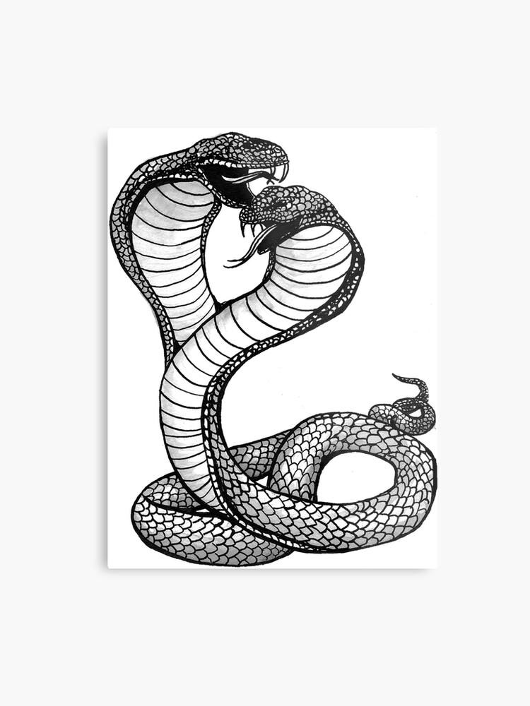 Two Headed Cobra Metal Print By Impaintingagain Redbubble