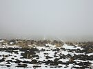 Snowy Winter Farm Land Dirt and Straw Landscape in Fog 3 - Earth's Surface without structural buildings, war, or blood by man - natural peaceful nature. by Barberelli