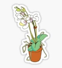 Orchidee Sticker