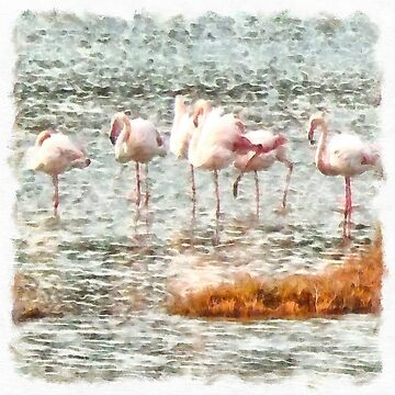 Six Flamingos A Wading Watercolor by taiche