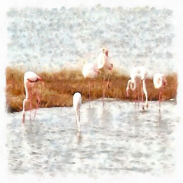 Seven Flamingos A Feeding Watercolor by taiche