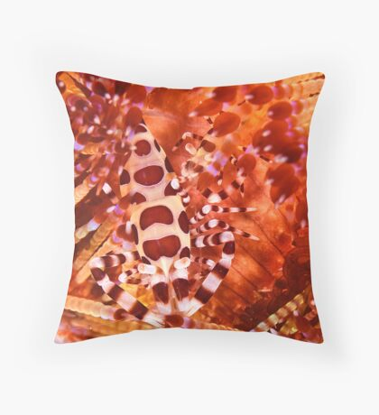 Coleman Shrimp on Fire Coral Throw Pillow