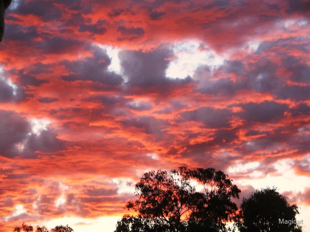 Fire in the Sky.. by Magicat