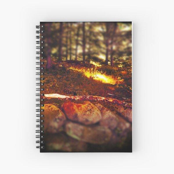 A silent glad in summerlight Spiral Notebook