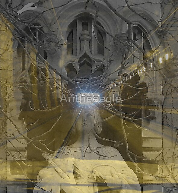 ARI's EYE :  by Aritheeagle