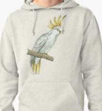 Sulfur crested cockatoo Pullover Hoodie