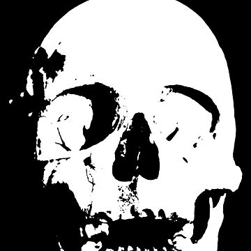 Skull by pandorasboxphot