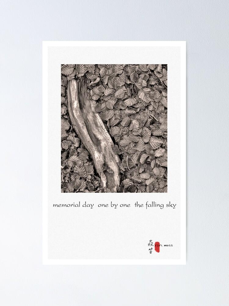 Alternate view of memorial day Poster