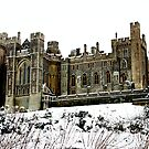 Arundel Castle by Vicki Isted