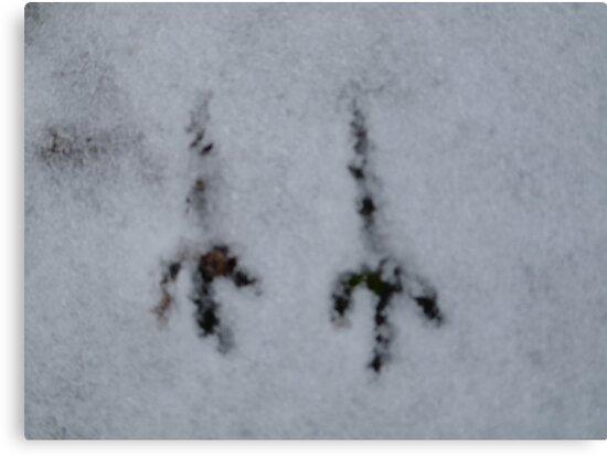 Ice Age - Landing On Planet Earth by HELUA