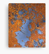 abstract oxide Canvas Print