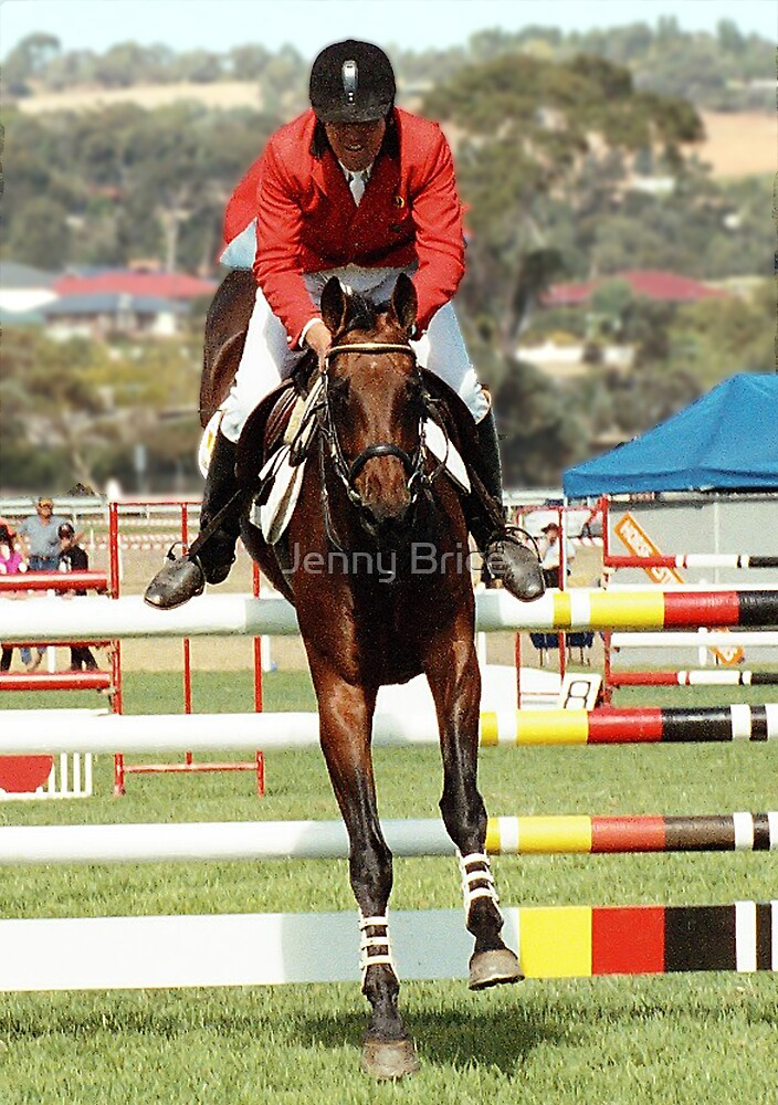 Show Jumper by Jenny Brice