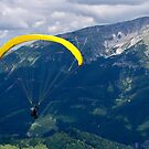 Paragliding over the Alps by Sekans
