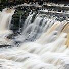 Lower Aysgarth falls by Stephen Liptrot