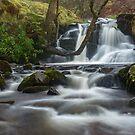 Blaen y Glyn waterfall by Stephen Liptrot