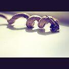 spiral by Rebecca Tun