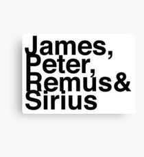 James, Remus, Sirius & Peter Canvas Print