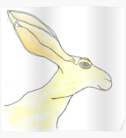 Jack Rabbit Poster
