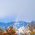 Ein winterlicher Regenbogen von claraphies