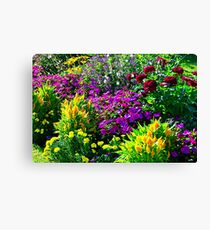 Beautiful flowers on the street of Baden-Baden Canvas Print