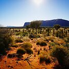 The Outback by Adam Northam