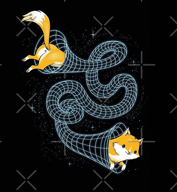 Wormhole Cat by tobiasfonseca