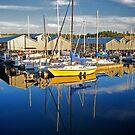 Let's Go Sailing Away  by Chrissy Ferguson