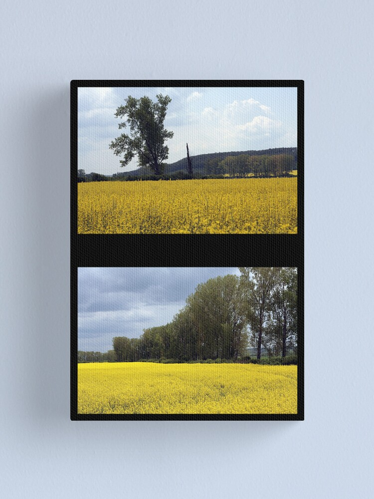 Alternate view of Yellow Sea – Diptych Canvas Print