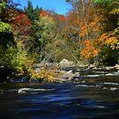 ~ Rivers Bend ~ by Tim Denny