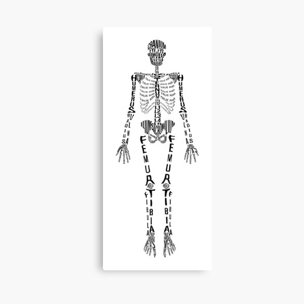 Typographical Skeleton Canvas Print