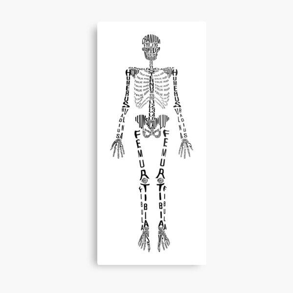 Typographical Skeleton Metal Print