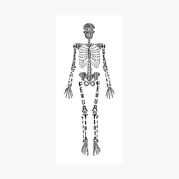 Squelette typographique Impression photo