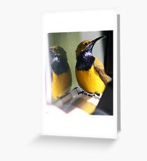 Aren't I Gorgeous? Greeting Card