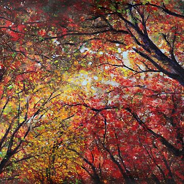 Autumn Light by katemccredie