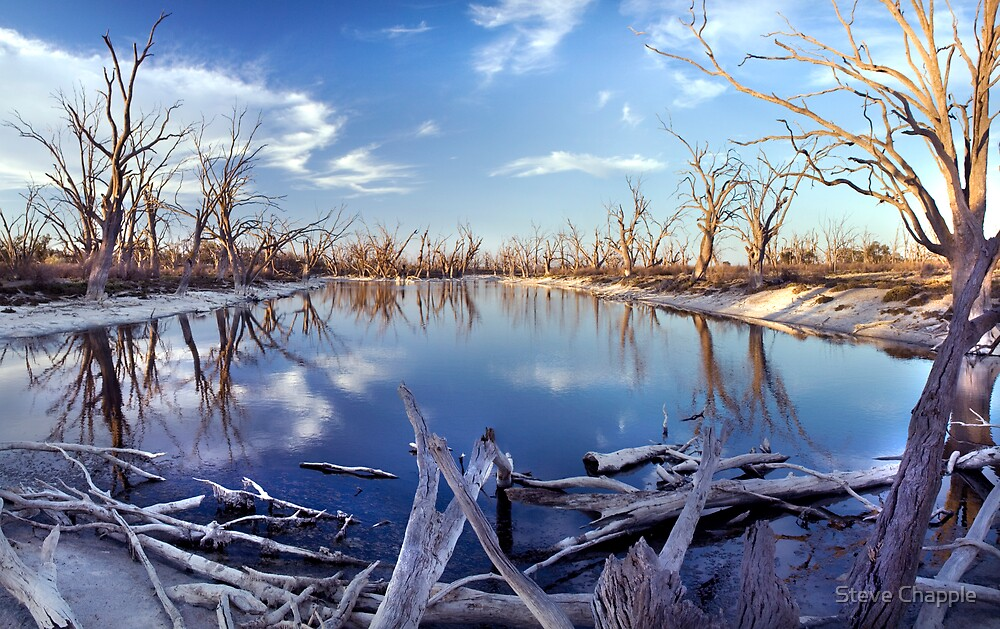 Lyrup Flats Log Jam by Steve Chapple