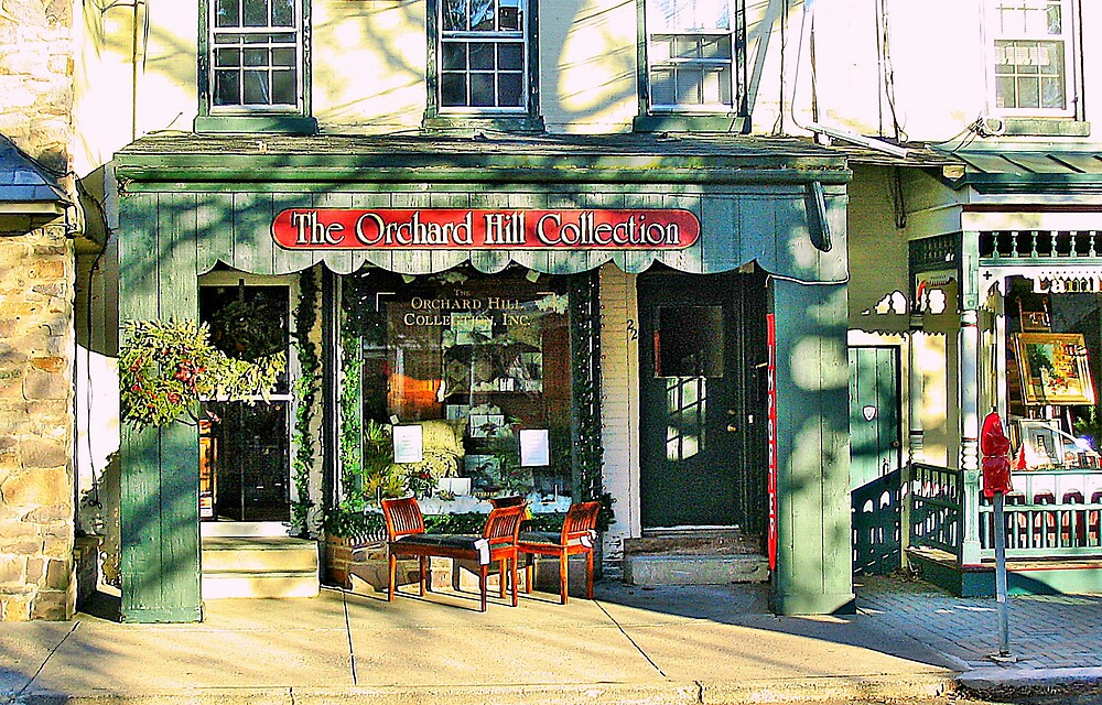 Country Charm  ( Lambertville Village  Storefront ) by fiat777