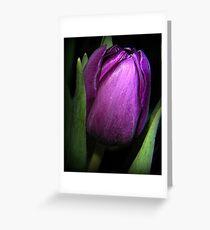 Purple Satin Greeting Card