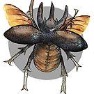 elephant beetle watercolor handpainted by Wieskunde