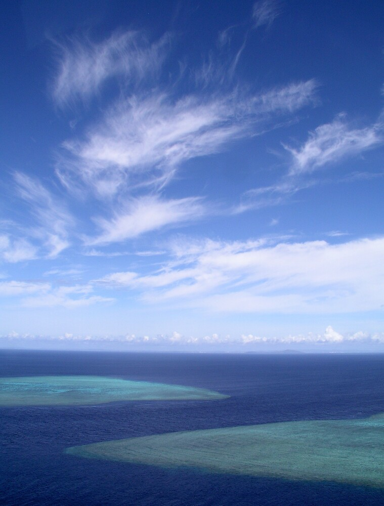 Ribbon Sky by Reef Ecoimages