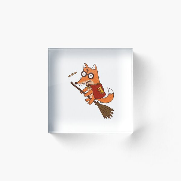 Hairry Foxter and the golden Snitch Acrylic Block