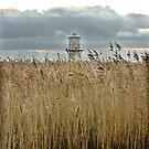 The lighthouse by intheflesh