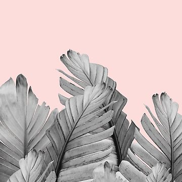 Blush Banana Leaves Dream #2 #tropical #decor #art by anitabellajantz