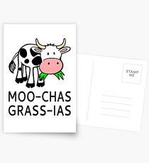 Moo-chas Grass-ias (Muchas Gracias) Postcards