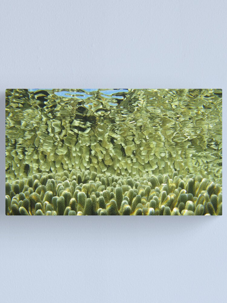 Alternate view of Golden tips Canvas Print