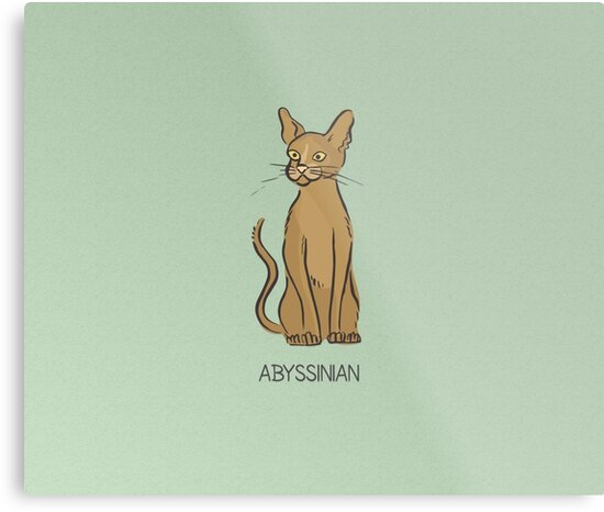 Abyssinian Cat by SoNifty