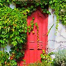 Red door, white wall, green vine by Garth Smith