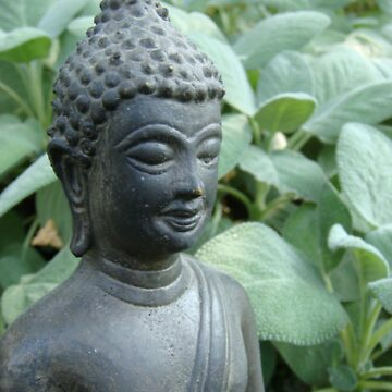 Budda in Nature  by pyager